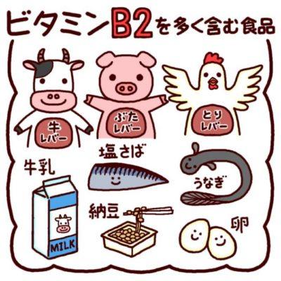 ビタミンB2(リボフラビン)効果とは?多く含まれる食品について