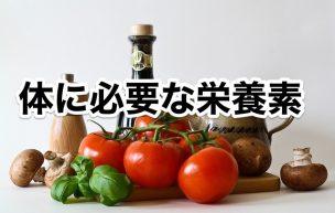 体に必要な栄養素一覧