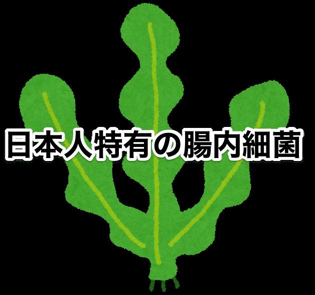 日本人は海藻の消化が得意
