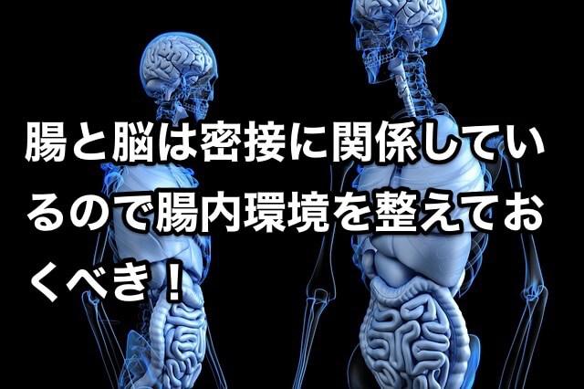 腸と脳は密接に関係しているので腸内環境を整えておくべき!