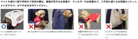 ペットを電車内に持ち込むときの注意点