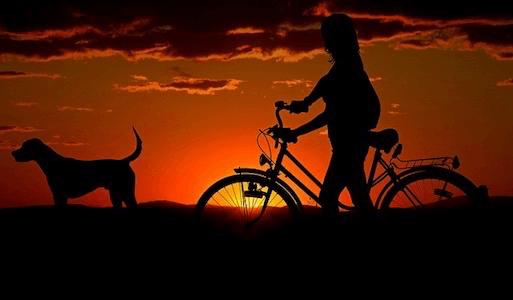 自転車を譲渡するときに知っておきたい2つのこと