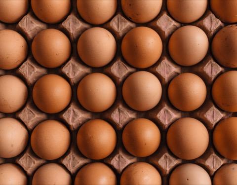 卵 食べ過ぎ 体に悪い
