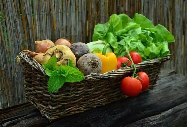 自炊を継続させるには宅配サービスを使うべきかも【生鮮食品は重い】